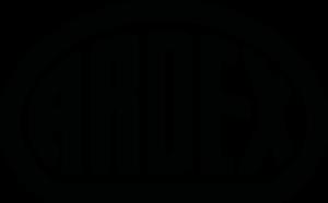 ARDEX_Logo-e1612009717152